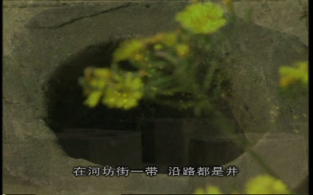 风雅钱塘:湖边的老井