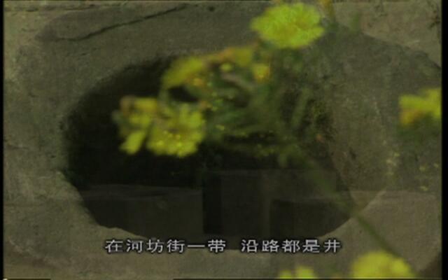 风雅钱塘:湖边的老井