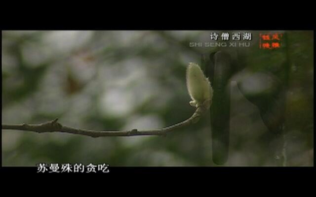 风雅钱塘:诗僧西湖
