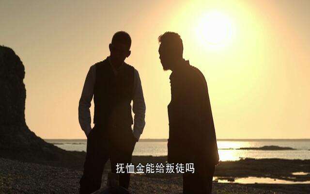 王大花的革命生涯 第9集