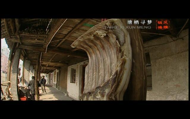 风雅钱塘:塘栖寻梦
