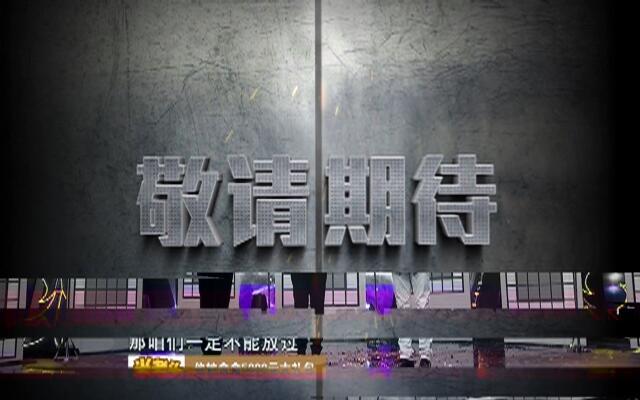 我不是明星第三季第12期:赵雅芝郑少秋互损,蔡少芬重现经典