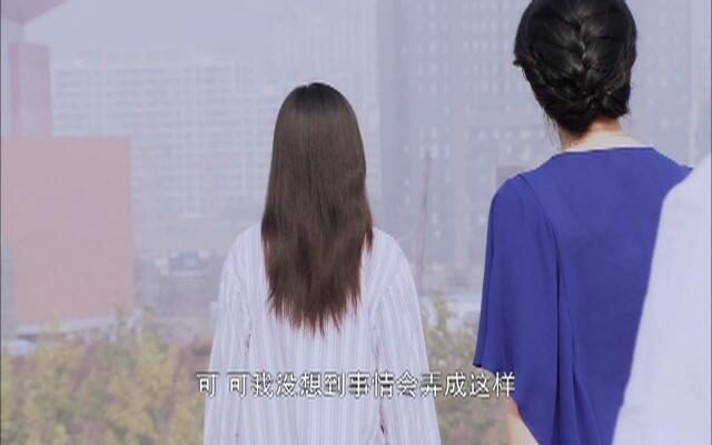 大都市小爱情 第16集