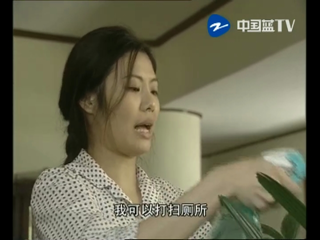 田教授家的28个保姆 第11集
