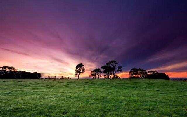 真正人间仙境 新西兰4k摄影