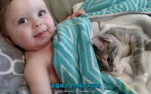 这宝宝和小猫咪都要萌翻了
