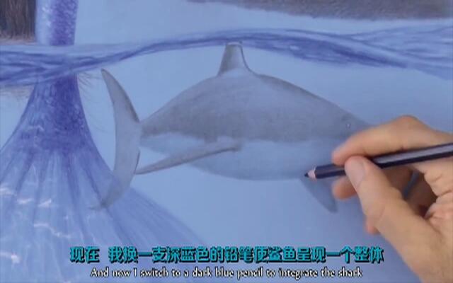 三分钟教你用彩铅画一条鲨鱼
