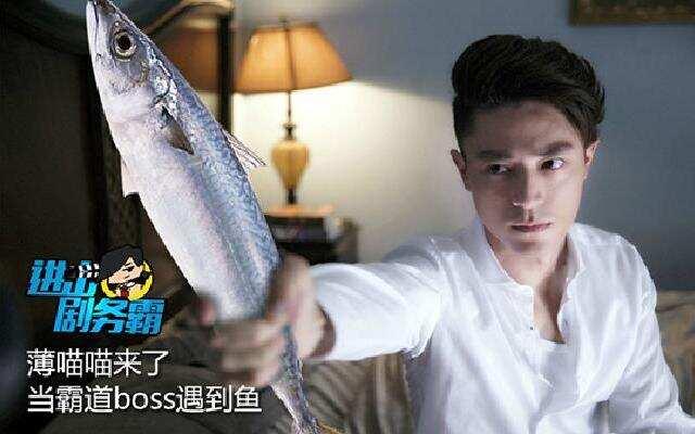 薄喵喵来了:霸道boss遇上鱼