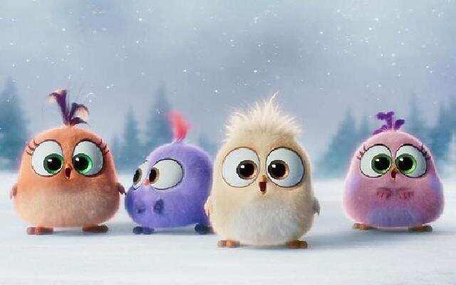 《愤怒的小鸟》小鸟宝宝们的圣诞祝福