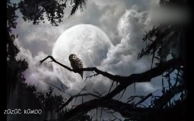 水彩大神ZAZAC NAMOO的新作《猫头鹰》,分分钟看呆了!