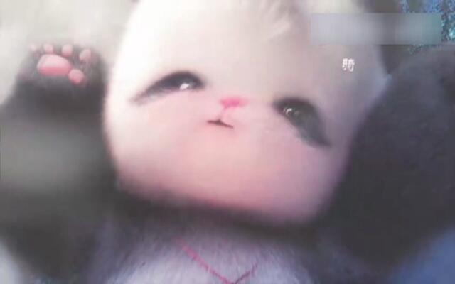 史上最萌成都宣传片《胖娃儿上成都》