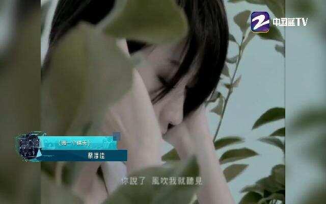 2017年音悦V榜 特别企划 我爱记歌词