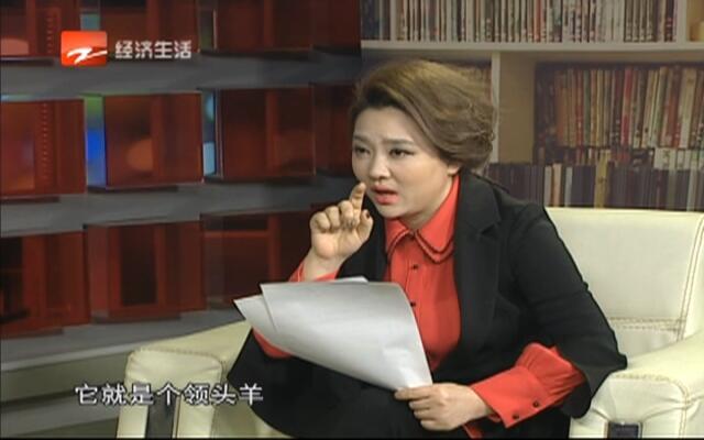 20170211《风云浙商面对面》:银江集团董事长  王辉