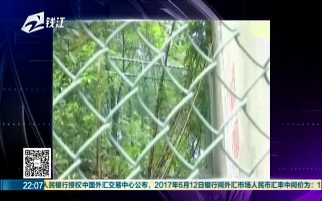 2女1男为逃票翻墙进动物园  落地周围50米有7只虎