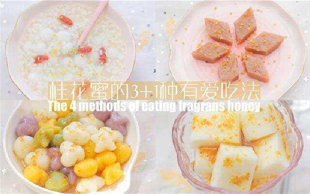 【厨娘物语】桂花蜜的3+1种有爱吃法