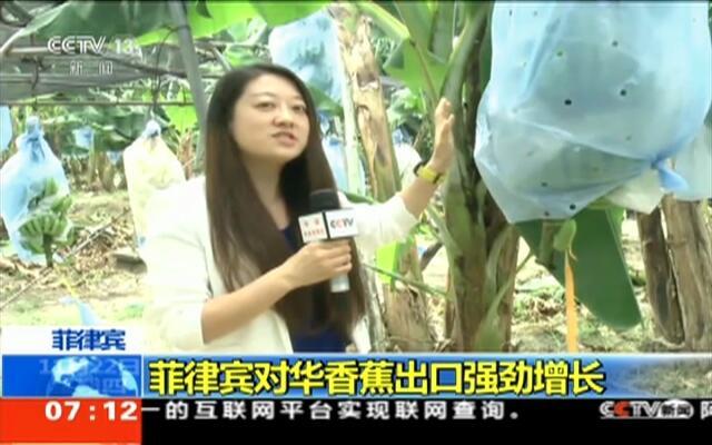 菲律宾对华香蕉出口强劲增长