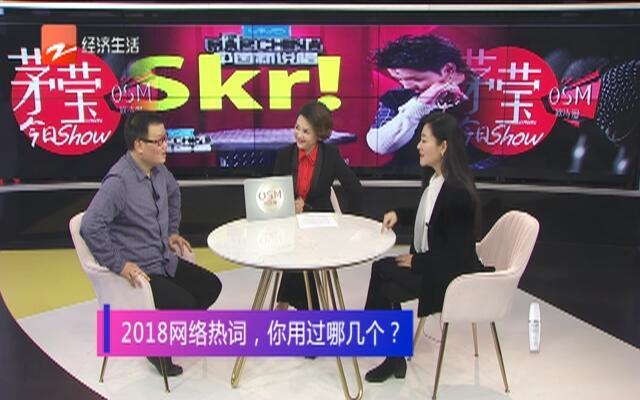 20181231《茅莹今日秀》:2018网络热词,你用过哪几个?