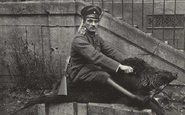 【中国照相馆】欧美国家为何如此依赖中国的猪毛?曾作为重要武器参与世界大战
