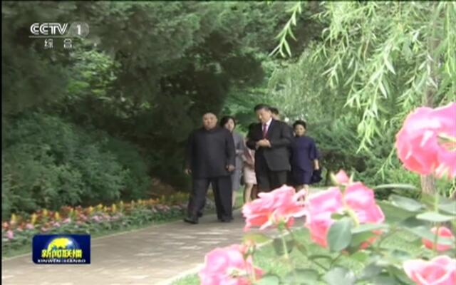 习近平会见朝鲜劳动党委员长 国务委员会委员长