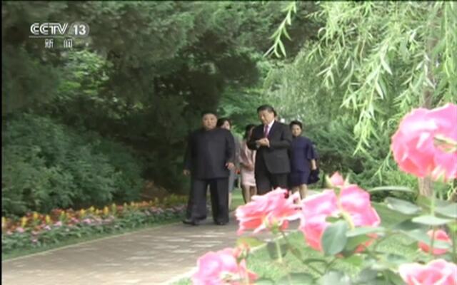习近平会见朝鲜劳动党委员长、国务委员会委员长