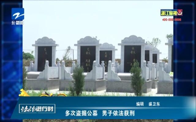 多次盗掘公墓  男子依法获刑