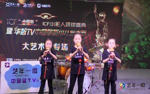 绍兴诸暨 - 大艺术家-乐器- 《映山红》