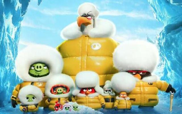 《愤怒的小鸟2》猪鸟首度联手冒险