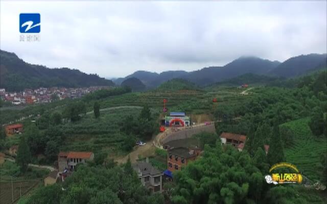 20190718《爱上乡村》:新山海经——张群英  小浆果做出大产业