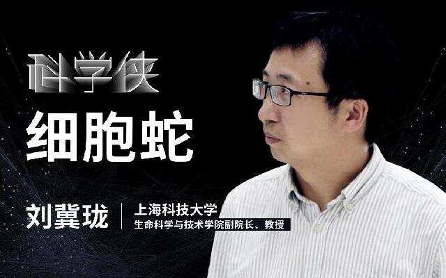 【一刻talks】刘冀珑:从细胞到细胞蛇,我们正在解析生命的奥秘