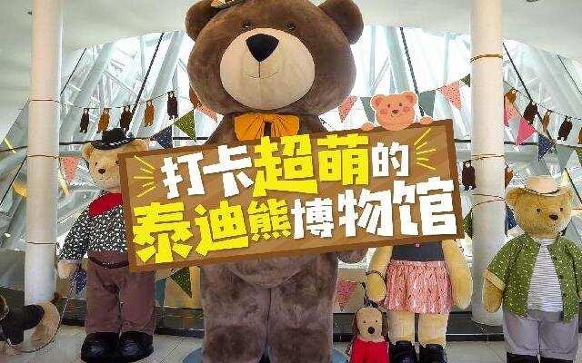 【HI走啦】济州岛第七集:泰迪迷必看!带你打卡超甜的泰迪熊博物馆,萌化你的心!