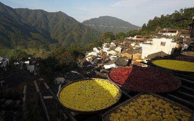 《中国村落》:快艺考的美术生别错过 这是最适合写生的地方