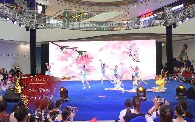 义乌赛区-六级A班《风中月》-舞蹈-花蕾舞蹈
