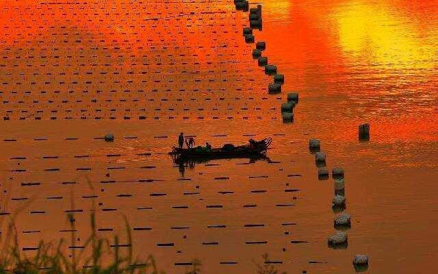 《中国村落》:摄影爱好者的天堂  福建霞浦的海上农田