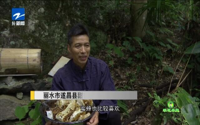 20190820《爱上乡村》:翠花牵线——甜蜜园中的甜蜜