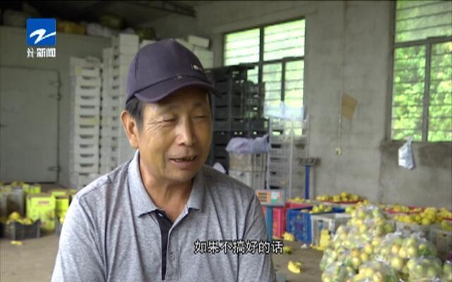 20190822《爱上乡村》:新山海经——王兆云  开百亩荒山  种致富金桃