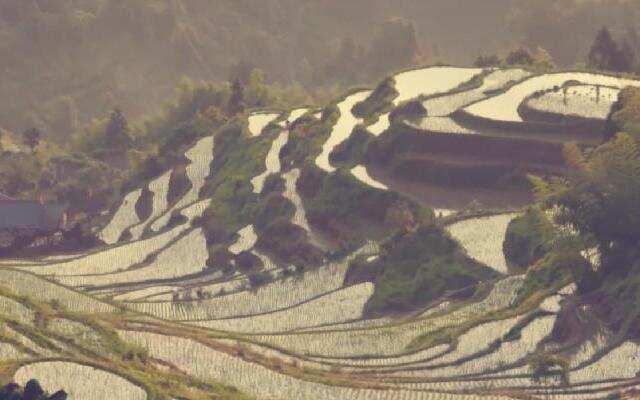 《中国村落》:农耕文明的奇迹元阳梯田 天然的山水田园风光画