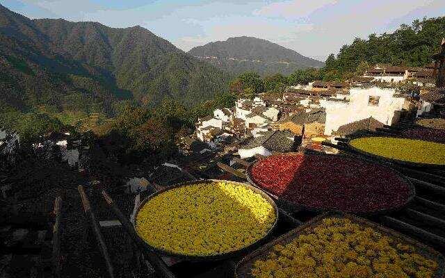 《中国村落》:一座篁岭村 半部南迁史