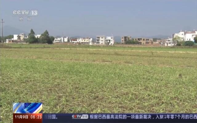 江西:旱情持续  农业生产受影响
