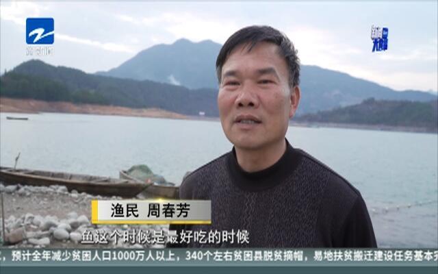 """遂昌冬至捕鱼  现""""千鱼飞跃""""热闹场面"""