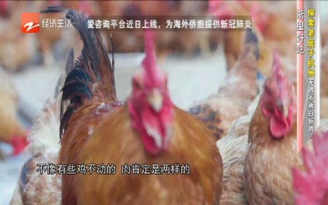 探索老底子  杭州无鸡不欢白斩鸡