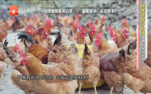 浙里好吃:探索老底子杭州无鸡不欢白斩鸡