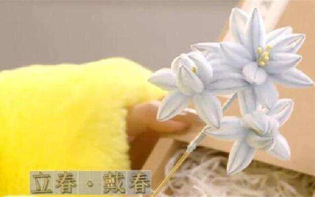 苏东坡也爱戴鲜花?!